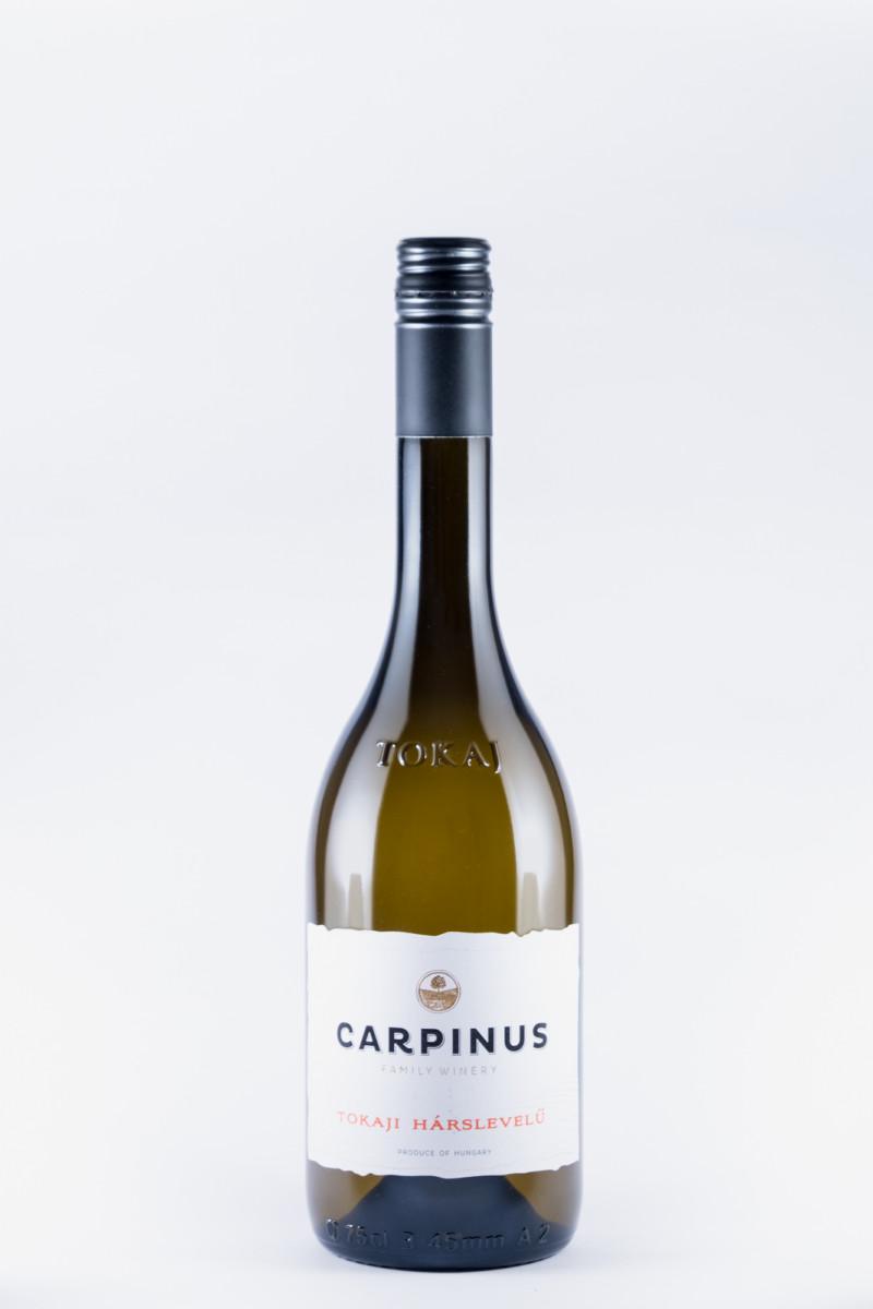 Carpinus Harslevelu