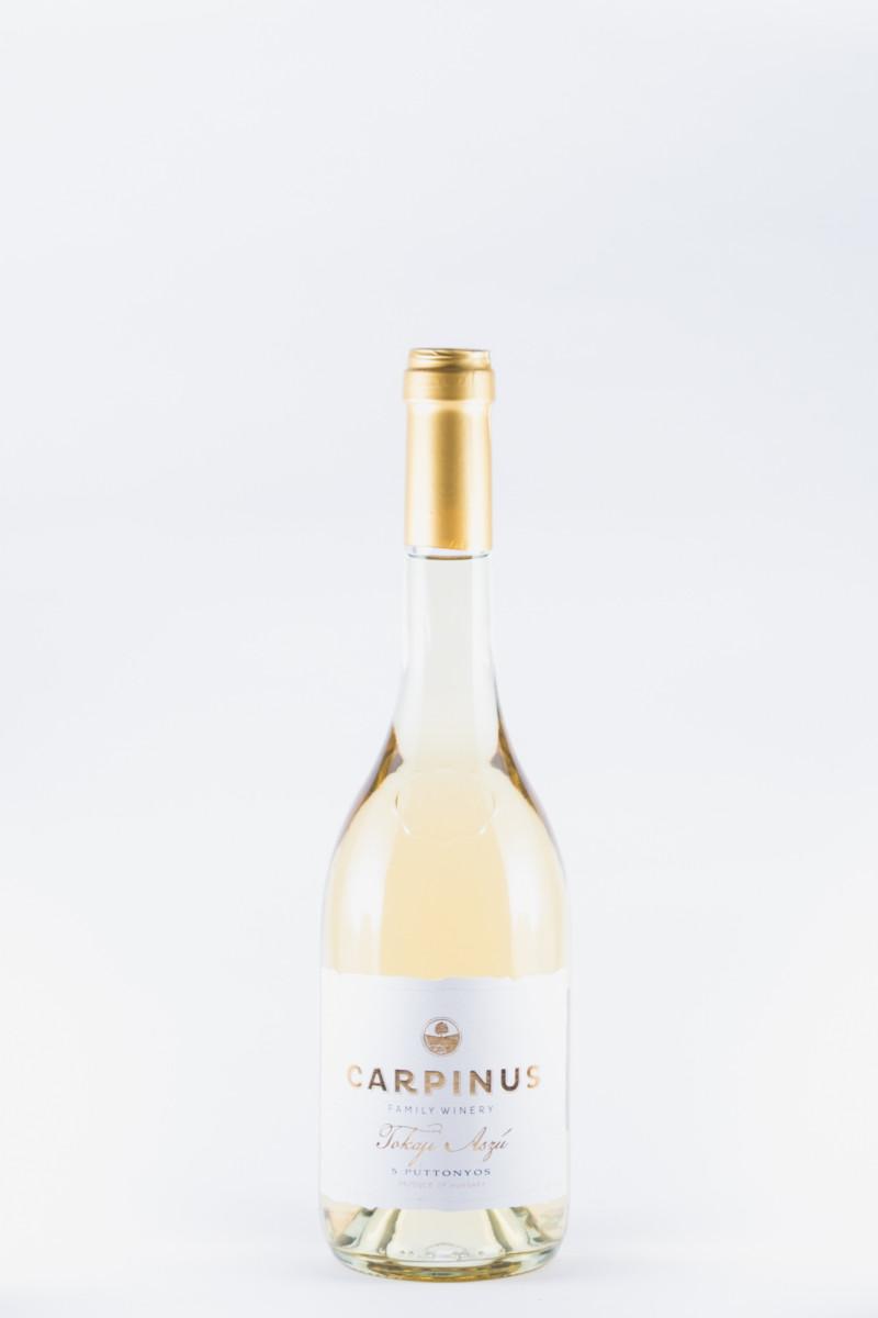 Carpinus Tokaji
