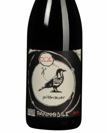 Pittnauer_Pannobile_2011_2_1_1_1
